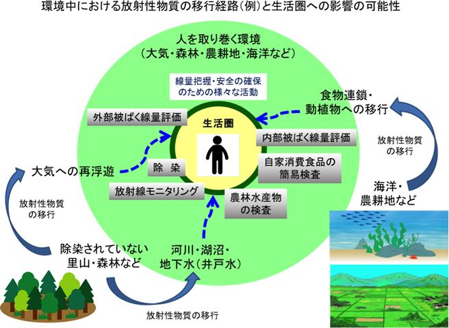 環境中における放射能物質の移行経路(例)と生活圏への影響の可能性