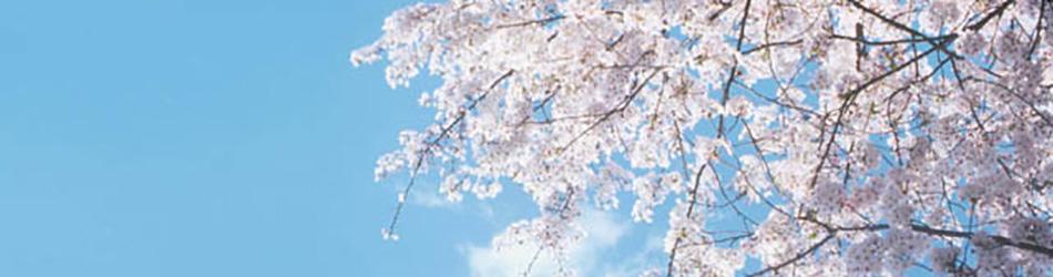 福島県の春