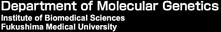 Department of Molecular Genetics, Institute of Biomedical Sciences, Fukushima Medical University